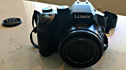 Panasonic Lumix FZ300 Camera