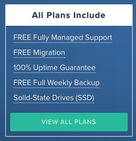 Rose VPN Hosting Black Friday Deal